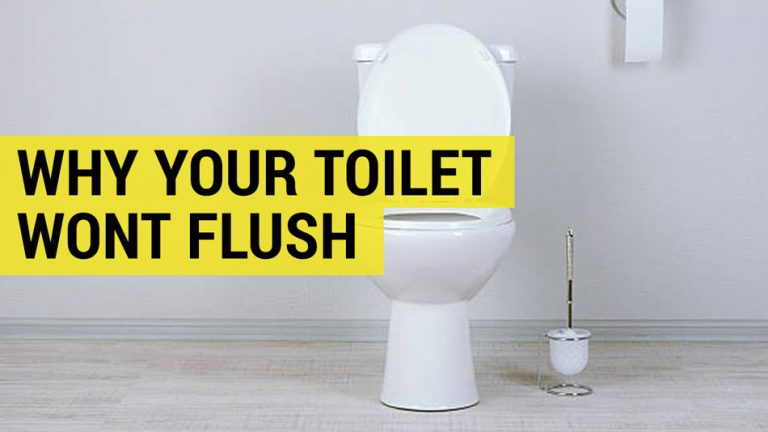 why your toilet wont flush in the UK