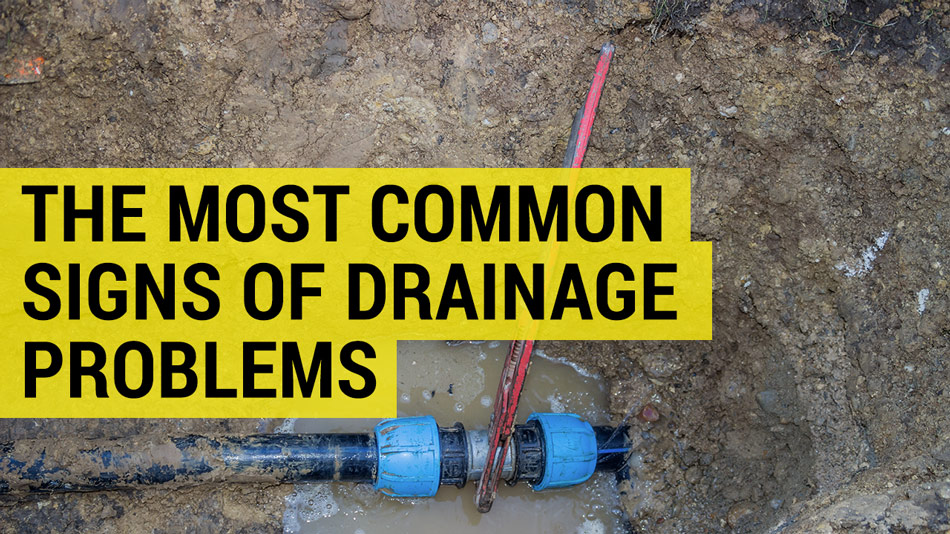 drainage problems signs